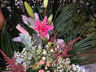 Flores Leymar 2