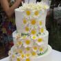 La boda de Olivia y Auxai Tartas 10