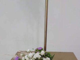Flors Mas Lluhi 3