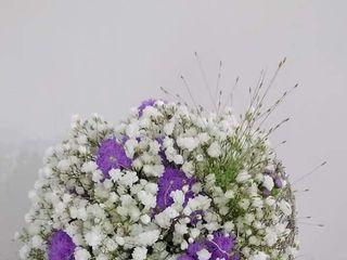 Flors Mas Lluhi 5