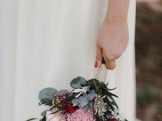 Rosas a Julieta 3