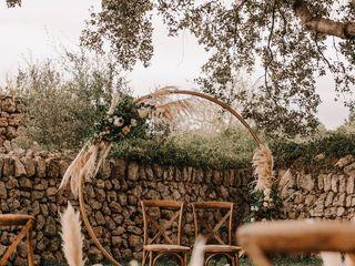 Wonder Weddings 3