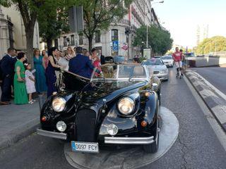 Chic Cars 3