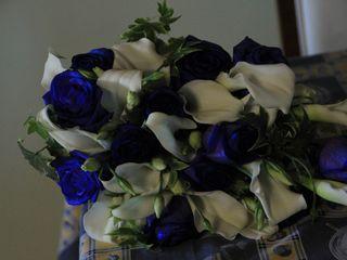 Flores Zamora 6