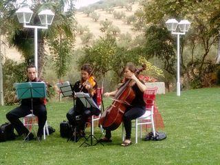 Cema Musical 2