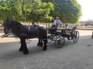 Carruatges de Cavalls Monistrol 2