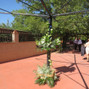 Floristería SanBlas 17