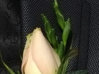 Flores Manso 2