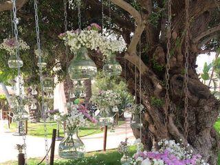 Jardins El Poblet 3