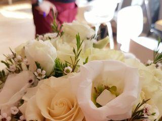 Flores y Plantas Mariflor 3