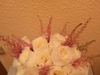 Les flors de Núria 1