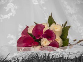 Liana Floristas 2