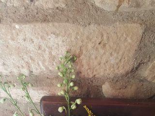 Siempreviva Decoración Floral 1