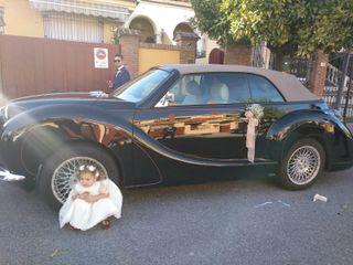 Olalá cars 2
