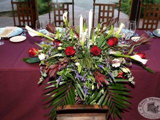 Decoraciones de bodas y eventos Paraíso 2