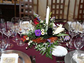 Decoraciones de bodas y eventos Paraíso 5