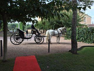 Armengol Torra - Coche de caballos 4