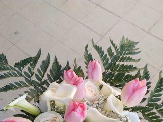 Las Flores de Tete 5