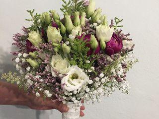 Flores y Espinas 4