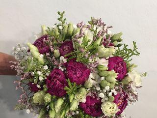 Flores y Espinas 5