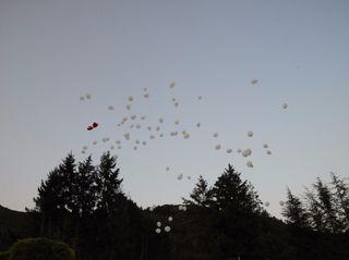 Globely Balloon Art Studio 2