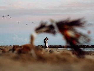 Wild Art Photography 1