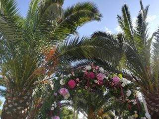 El jardín de Chelo 2