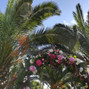 La boda de Mar y El jardín de Chelo 9