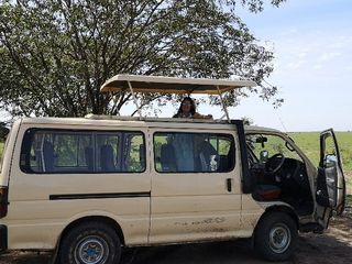 Masikio Safaris 5