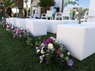 El jardín de Chelo 4