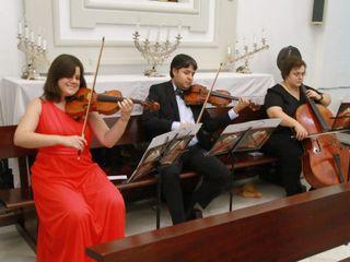 Musicordae 4