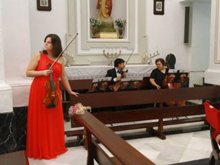 Musicordae 5