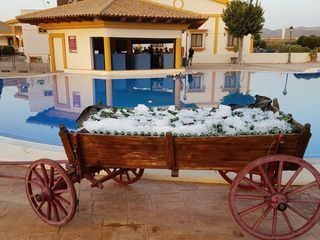 Hacienda Real Los Olivos 7