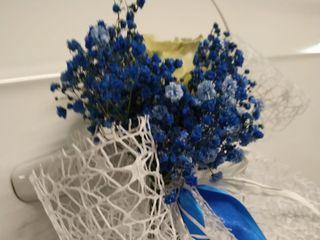 Flores Castillón 5