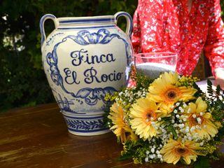 Finca El Rocio 5