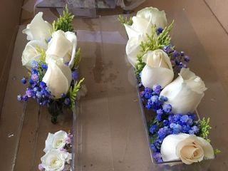 Flors i Verdesca 5