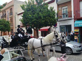 Juan Jose Solis - Carruajes y coches clásicos 1