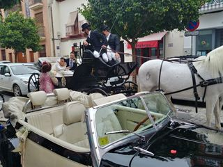 Juan Jose Solis - Carruajes y coches clásicos 3