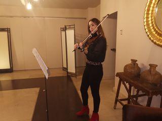 Miss Violina by MJ 5