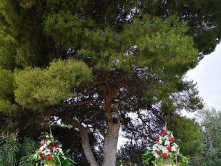 Luis Hoyo Floristas 5