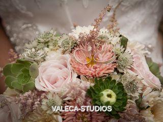 Valeca Studio 5