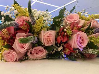Amaranto Flors 1