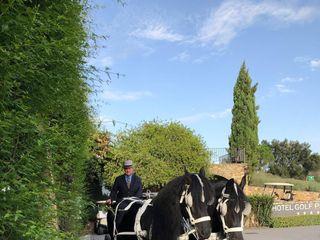 Carruatges de Cavalls Monistrol 3