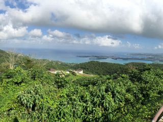 Carrefour Viajes Palau 2