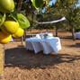La boda de Carolina Orvay Ribas y Serveis Culinaris 3