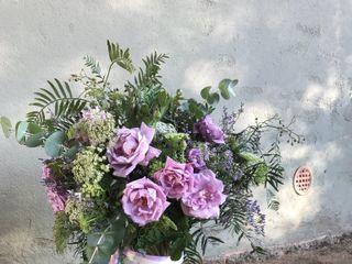 Flors i Plantes Bertrán 3