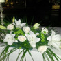 Flores Nati 2