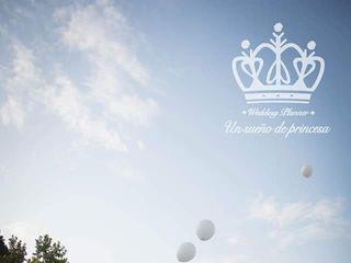 El Principito - Un sueño de princesa 1
