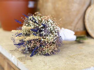 Flores de Bahías 2