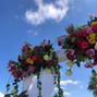 Ibiza Blooming 13